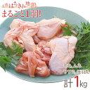 【ふるさと納税】地鶏 土佐はちきん地鶏まるごと一羽おためしセ