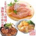 【ふるさと納税】土佐はちきん地鶏むね肉&海鮮丼の素セット 【