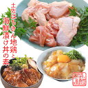 【ふるさと納税】土佐はちきん地鶏まるごと一羽セット&海鮮丼の