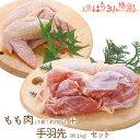 【ふるさと納税】地鶏 土佐はちきん地鶏もも肉&手羽先セット