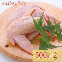 【ふるさと納税】地鶏 土佐はちきん地鶏手羽先 500g×2パ