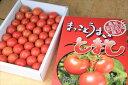 【ふるさと納税】水田さんのまっことうまい!フルーツトマト 約2kg【高知県産】