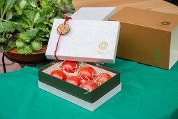 【ふるさと納税】石垣トマトSランク