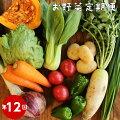 12回野菜便詰め合わせ旬の時期にお届け約8〜10品