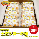 【ふるさと納税】<土佐ジローの卵 6個パック×6(36個)>高知県 佐川町 もちおのしっぽ【常温】