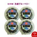 【ふるさと納税】<ブルーベリー(冷凍)4パックセット> 高知...
