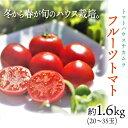【ふるさと納税】<フルーツトマト 約1.6kg×1箱>高知県 佐川町 トマトハウスナカムラ 野菜 贈答用【常温】