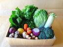 【ふるさと納税】越知町産季節の野菜セット(年1回発送)