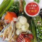 【定期便】季節の農産物〜風車のまちの台所〜【3ヶ月連続お届け】