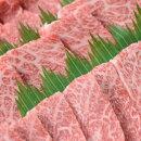 Asz-07四万十麦酒牛(しまんとビールぎゅう)の特選厚切り焼き肉セット