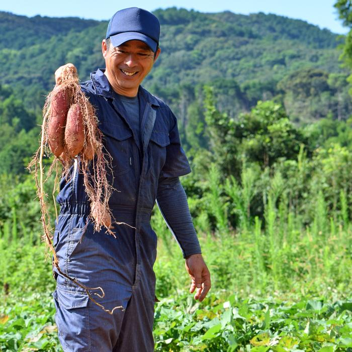 【ふるさと納税】中野農園のお芋(シルクスイート)10kg