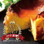 【ふるさと納税】【父の日限定ギフト】バスクチーズケーキ