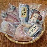 【ふるさと納税】天日塩を使用した特選干物セット大