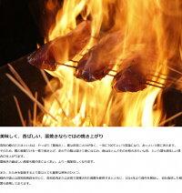 【ふるさと納税】[0573]SR-10明神水産わら焼き戻りかつおの塩たたき3節セット