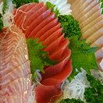 【ふるさと納税】[0909]春初夏のお刺身用鮮魚の頒布便3回【第3金曜お届け】