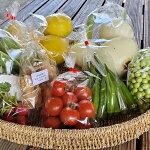 【ふるさと納税】[1324]黒潮町の野菜たち、庭先集荷でお届けセット