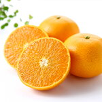【ふるさと納税】[1429]高級柑橘温室せとか秀L品14個入り