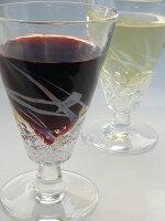 【ふるさと納税】[1372]アクアワイングラスセット