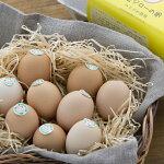 【ふるさと納税】[1238]【3カ月連続お届け】放し飼い土佐ジローの卵20個入り