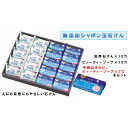 【ふるさと納税】SY01-10 シャボン玉固形石けんセット