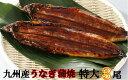 【ふるさと納税】九州産うなぎ蒲焼特大3尾(1尾あたり200〜235g)