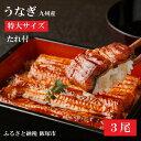 【ふるさと納税】【A5-001】魚市場厳選 九州産うなぎ蒲焼...
