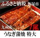 【ふるさと納税】魚市場厳選!九州産 うなぎ蒲焼 特大サイズ7尾 たれ付※着日はご指定いただけません