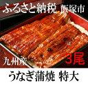 【ふるさと納税】魚市場厳選 うなぎ蒲焼 特大サイズ3尾(九州産 )※着日はご指定いただけません