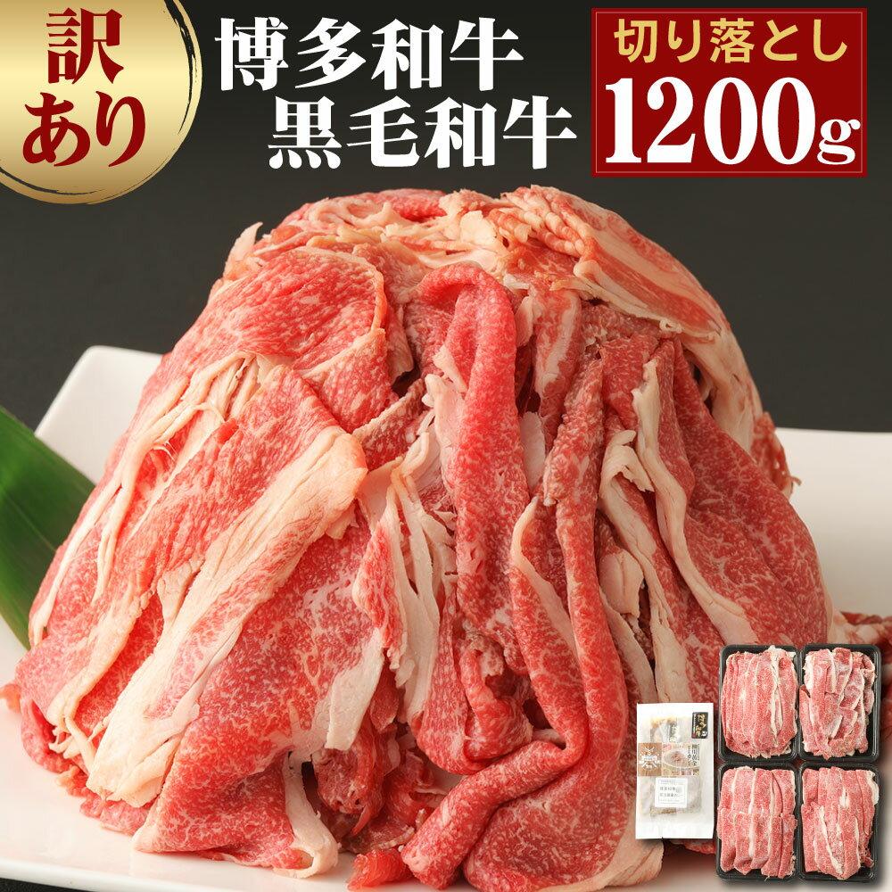 牛肉のコスパ9位:博多和牛 切り落とし1.2kg+博多和牛の黄金カレー1食