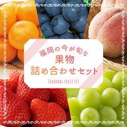 【ふるさと納税】今が旬な地元産の果物詰め合わせセット おまかせ ランダム フルーツ 果物 詰め合わせ セット 季節の果物 冷蔵 送料無料 画像1