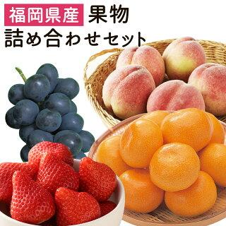 地元産の果物詰め合わせセット