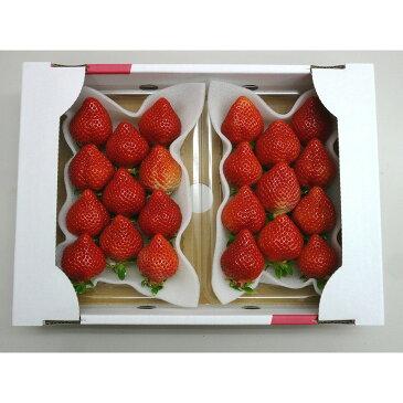 【ふるさと納税】【期間限定】完熟 あまおうイチゴ 320g×2パック