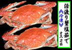豊前海産活渡り蟹塩茹で大オス2匹
