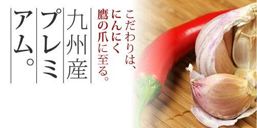 【ふるさと納税】博多もつ鍋(まぼろしの味噌)&水炊きセット(ぶつ切りor切り身)送料無料福岡鍋国産牛モツ福岡