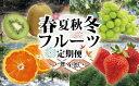 【ふるさと納税】KB0030_【定期便】むなかた旬のフルーツ