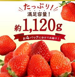 【ふるさと納税】博多あまおう 1120g 280g×4パック サイズ様々 訳ありではない あまおう いちご 苺 イチゴ 果物 フルーツ お楽しみ 送料無料 福岡県産・・・ 画像2