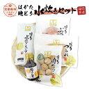 【ふるさと納税】福岡県産 はかた地どり 水炊きセット ブツ切り 300g 肉団子 200g スープ