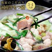 【ふるさと納税】もつ鍋セット(3〜4人前)