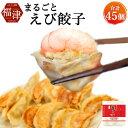 【ふるさと納税】まるごとえび餃子 15個×3パック 45個 特製たれ・柚子胡椒付