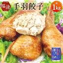 【ふるさと納税】手羽餃子 約1kg 約250g×4パック 冷