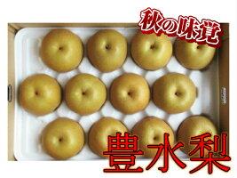 【ふるさと納税】B215春光園豊水梨5kg