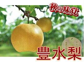 【ふるさと納税】鈴木農園特撰甘果逸品豊水梨5kg