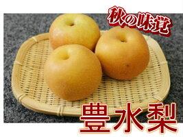 【ふるさと納税】梨の山茂梨園豊水梨5kg箱