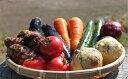 【ふるさと納税】UIC名水うきはの無農薬減農薬お野菜セットS...