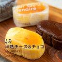 【ふるさと納税】山の麓 半熟チーズ・チョコ