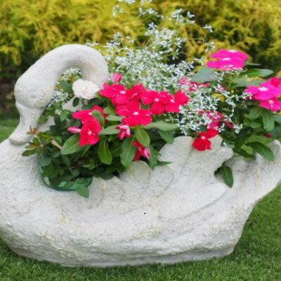 【ふるさと納税】季節のお花寄せ植え(白鳥型鉢) 【植物】