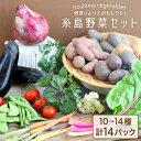 【ふるさと納税】旬を味わう『糸島野菜セット』 イタリア野菜 オーガニック 野菜ソムリエ松永 AJB001