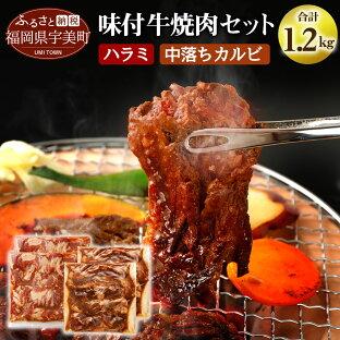 【ふるさと納税】【A-010】味付け牛焼肉セット合計約1.2kg 送料無料 焼肉 セット ハラミ カルビ 中落 味付け bbq BBQ バーベキューの画像