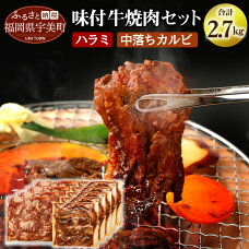 【ふるさと納税】味付け牛焼肉セット合計約2.7kg送料無料焼肉セットハラミカルビ中落味付けbbqBBQバーベキュー牛肉味付き焼肉味付け肉