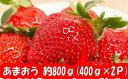 【ふるさと納税】予約受付★限定品★あまおう(400g×2パック)/2021年12月〜2022年4月発送 いちご 苺 高級 フルーツ .A520